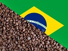 Βραζιλία καφές
