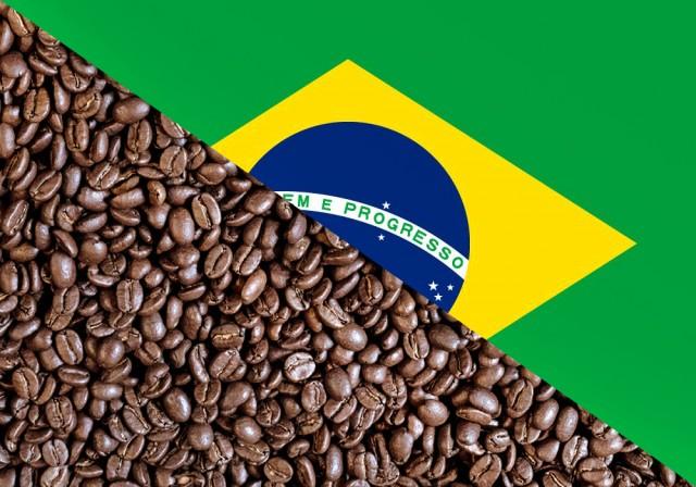 Βραζιλία: Πτώση στις εξαγωγές καφέ