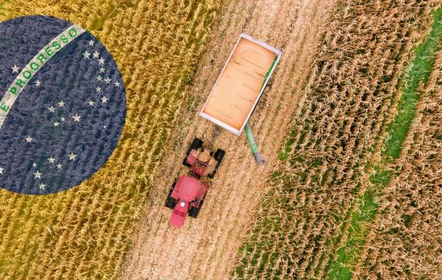 Βραζιλία: Άνοδος για τις γεωργικές εξαγωγές Σεπτεμβρίου