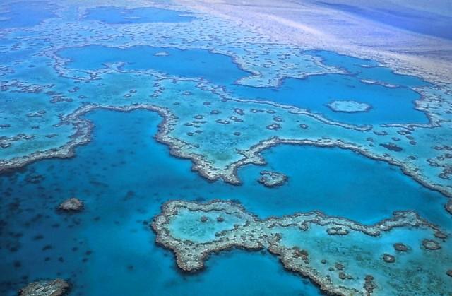 Αυστραλία: Ο Μεγάλος Κοραλλιογενής Ύφαλος, «ασθενής» της κλιματικής αλλαγής