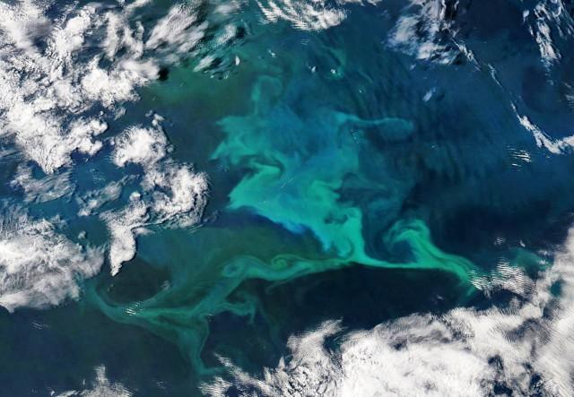 Πώς τα θαλάσσια ρεύματα επηρεάζονται από την κλιματική αλλαγή