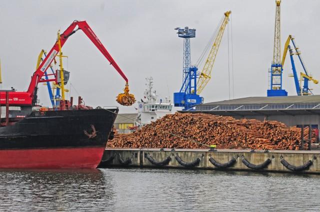 Περιορίζονται οι εξαγωγές ξυλείας από τη Ρωσία