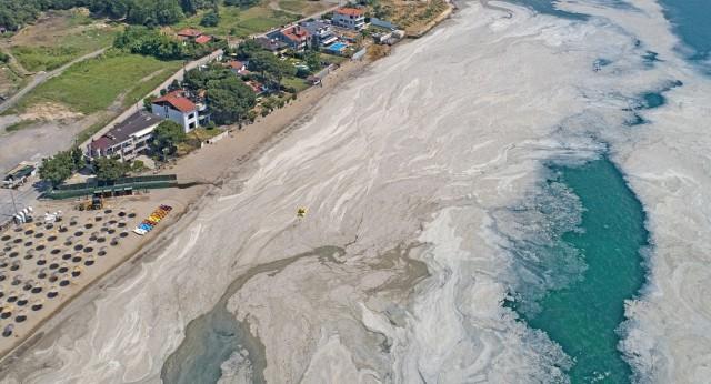 Σε παραλίες της Λήμνου η βλέννα από τις ακτές του Μαρμαρά