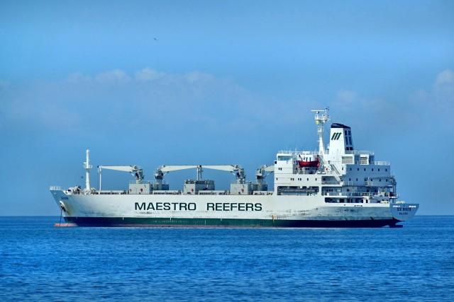 Reefers: Σημαντική άνοδος των ναύλων με αισιόδοξες εκτιμήσεις για το επόμενο έτος