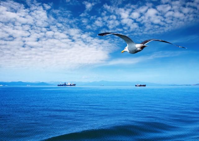 Η HELMEPA, αρωγός για την απανθρακοποίηση της ναυτιλίας
